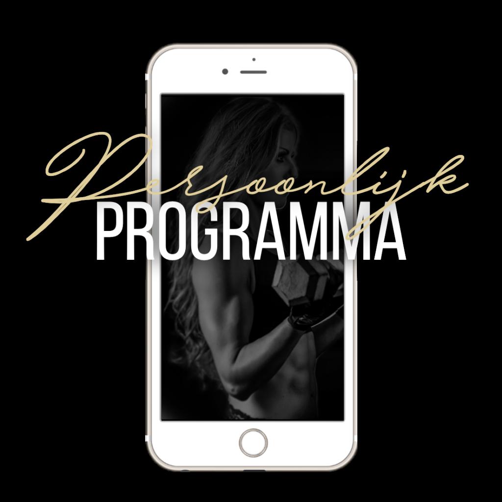 Persoonlijk programma